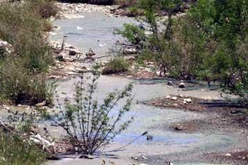 Αποφάσεις του ΣτΕ για την προστασία ρεμάτων στην περιοχή Αλίμου